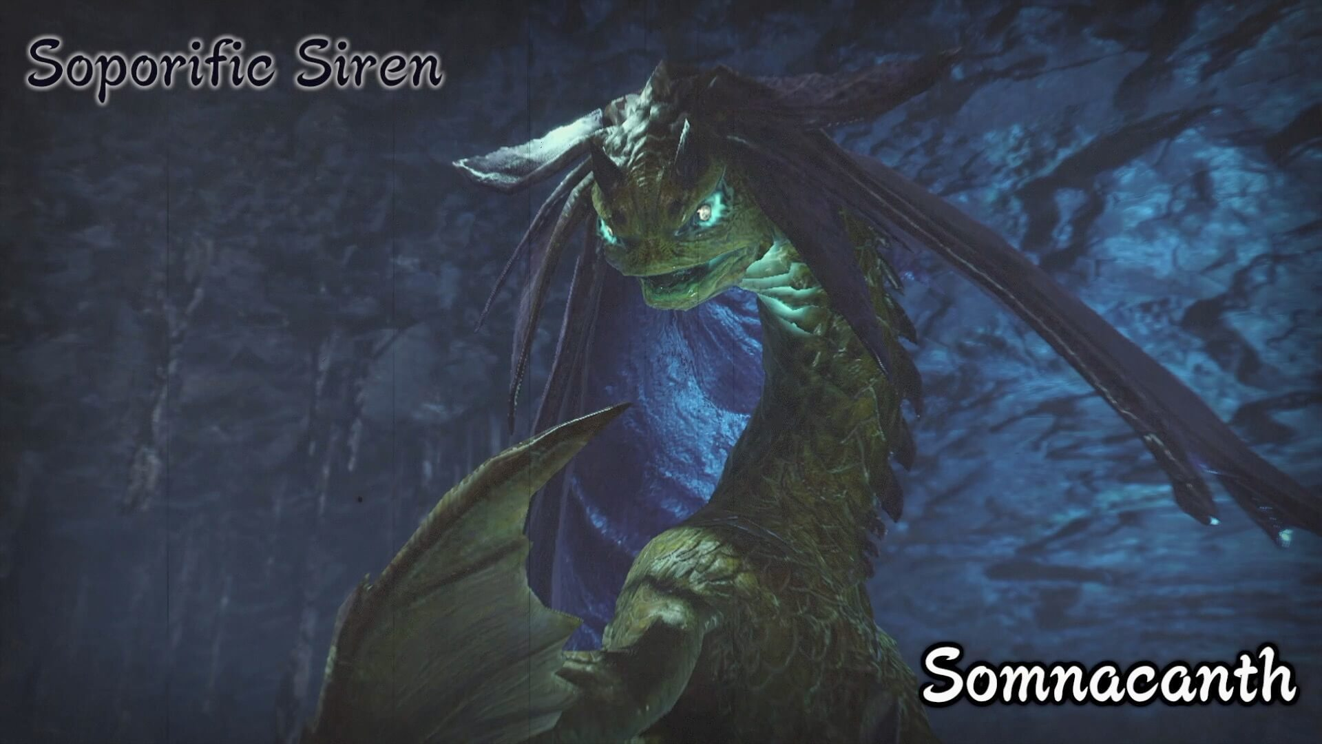 Soporific Siren
