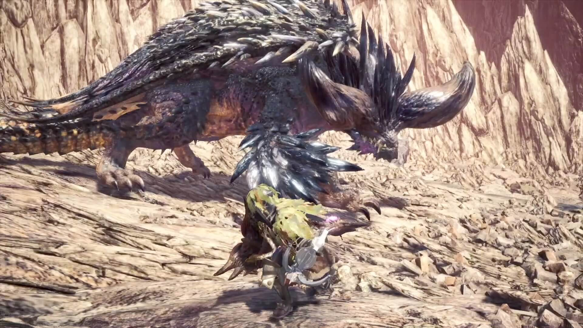Hide and Seek with Runier Nergigante
